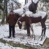 Владимир, 33, г.Сальск