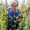 галина, 61, г.Заводоуковск