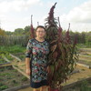 Марина, 51, г.Асино