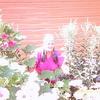 АНТОНИНА, 60, г.Вологда