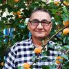 Дмитрий, 62, г.Ульяновск