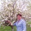 Светлана, 51, г.Старый Оскол
