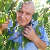 SERGEI, 64, г.Тимашевск