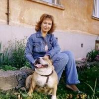 elena, 52 года, Близнецы, Москва
